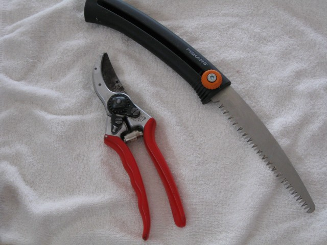 Felco Number 2 Pruners and Fiskars retractable saw.