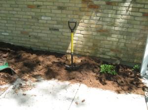 Soil- the proper texture.